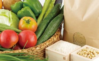 L359 お米と季節野菜のおまかせセット【400pt】