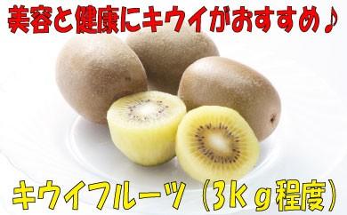A014.キウイフルーツ(3kg程度)
