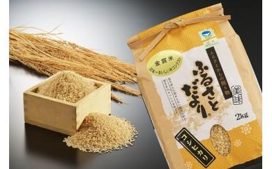 1705033 『定期便』平成29年産 日本一おいしい米コンテスト金賞受賞生産者お米 玄米7kg × 5か月