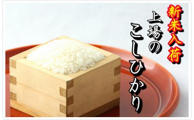 B147-O 【限定入荷!】有機肥料を使って栽培した『上場産コシヒカリ』白米10㎏ (29年産)
