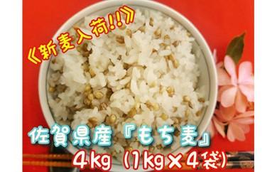 B148-O 【限定入荷】佐賀県産『もち麦』4kg(1kg×4袋)