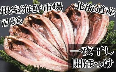 CA-14024 根室海鮮市場<直送>開きホッケ一夜干6枚入[338303]