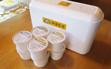 [№5634-0125]アイスクリーム 3種 8個