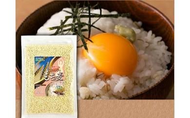 A98 【大注目!!】スーパーもち麦