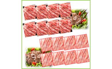 【B05005】メガ盛り!鹿児島県産豚モモ・豚ウデスライス16パックセット(約8kg)