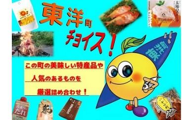 S42 東洋チョイスセット【Aコース】[5,000円以上]