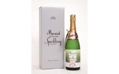AJ03 倉敷マスカットワイン スパークリング やや甘口 720ml