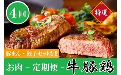 E-11 【全4回】しんとみお肉の定期便(牛・豚・鶏・中華セット)【25,000pt】