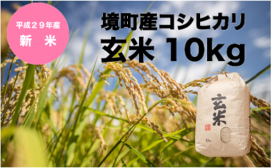 709 【29年産】境町産コシヒカリ玄米10㎏
