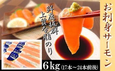 CC-18003 【脂のノリ抜群!】お刺身トラウトサーモン[376595]