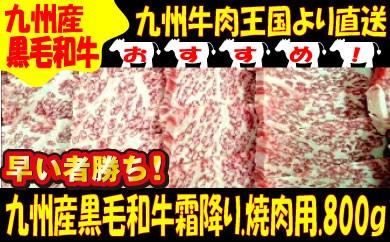 B059.九州牛肉王国より直送.九州産黒毛和牛霜降り.焼肉用【800g】