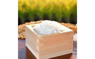 【B1-064】平成30年産米 お弁当屋さんが太鼓判!棚田浮立の里のお米 9.5kg