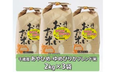 No.122 千歳産あやひめ・ゆめぴりかブレンド米 約6kg / お米 希少 セット 北海道 人気