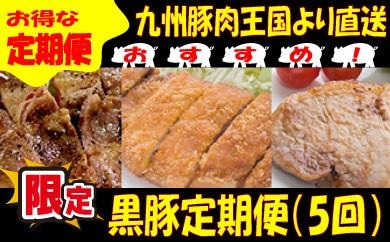 E037.【お得】九州黒豚王国.定期便Eセット.限定100セット