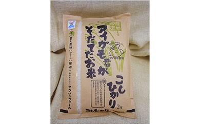 AS02 有機JAS認証「アイガモ君が育てたお米」コシヒカリ 2㎏×2 【13000pt】