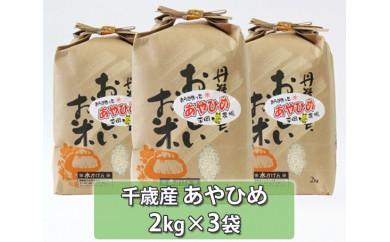 No.120 千歳産あやひめ 約6kg / お米 希少 北海道 人気