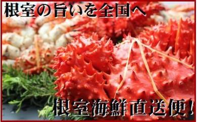 CD-70003 【北海道根室産】茹でたて花咲ガニ5~6尾(2kg前後)[376552]