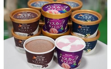 S-01 北海道アイスクリーム  【110ml 3種類 計12個】