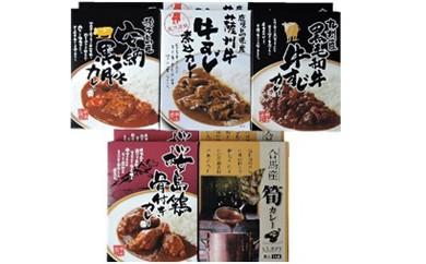 TS08 【大平樂】九州食べ比べカレー(5種×2)10個セット