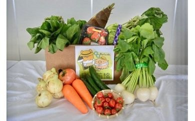 A-03 赤城南麓で育った季節の野菜