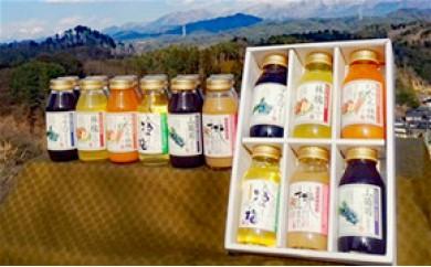 30-A51 小池自慢の果汁満喫バラエティー飲み比べセット(KF12)