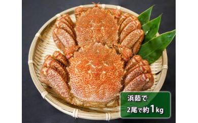No.108 北海道産 浜茹で毛がに (2尾で約1kg) / 毛ガニ 蟹 北海道 人気