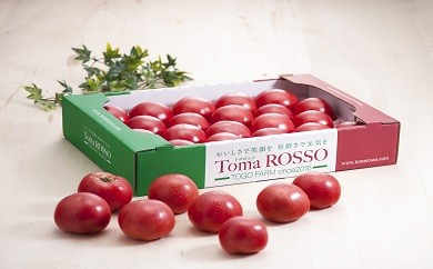 Toma Rosso トマト