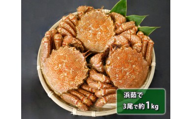 No.099 北海道産 浜茹で毛がに (3尾で約1kg)