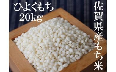 D-29 佐賀県産もち米(ヒヨクモチ) 白米20kg
