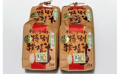 A01-402 三間米コシヒカリ(特別栽培米) 8kg