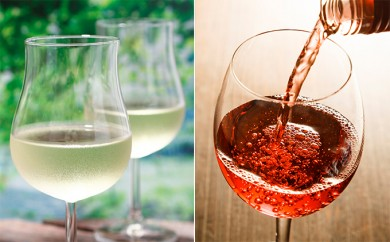 [№5742-0291]北見ワインナイアガラ&ポートランド・北見ワインキャンベルアーリーロゼ 各1本