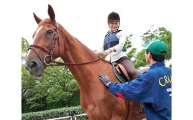 No.032 乗馬体験(30分)+蹄鉄プレゼント