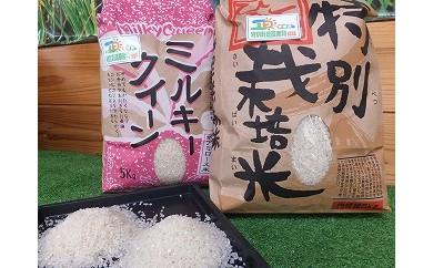 No.202 豊かな大地が育む特別栽培米コシヒカリとミルキークイーンのお米10kgセット