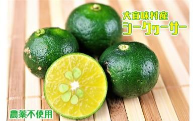 大宜味村産 農薬不使用シークヮーサー【10セット限定】
