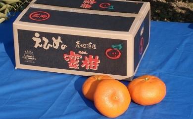 A01-727 甘平(ワールドファーマーズ)【2月頃お届け】※予約受付