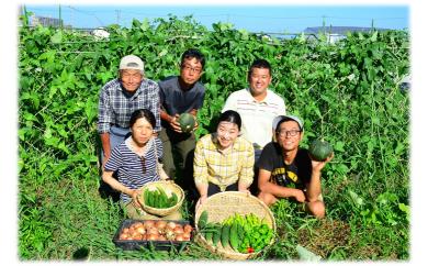 農薬・化学肥料不使用「秋の野菜詰合せセット」