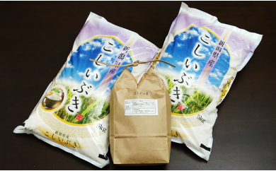 C05 新潟県弥彦村こしいぶき 毎月12kg 3回お届け