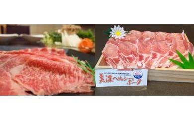 62S-0001 飛騨牛・美濃ヘルシーポーク 食べ比べセット コース③