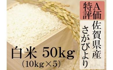 H-3 【特A】厳選!佐賀県産さがびより 白米50kg