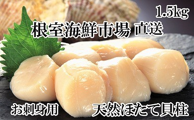 CD-22006 根室海鮮市場 刺身用天然ほたて貝柱1.5kg(46~60玉)[379174]