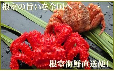CB-70008 【北海道根室産】花咲ガニと毛ガニの食べ比べセット[379423]