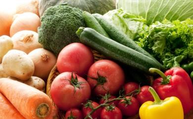 [№5865-0146]とみずく農園の季節の野菜セット(9~10種類)