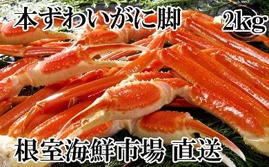 CD-14005 根室海鮮市場 本ずわいがに脚2kg(6~9肩)[379163]