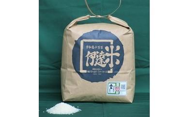 A01-403 伊達米コシヒカリ(特別栽培米) 8kg