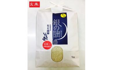 日本一連続受賞米!特別栽培米 銀の朏(ぎんのみかづき)玄米5kg