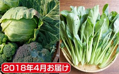 [№5881-0100]府中市内農家の季節野菜・果物詰合せ 2018年4月お届け