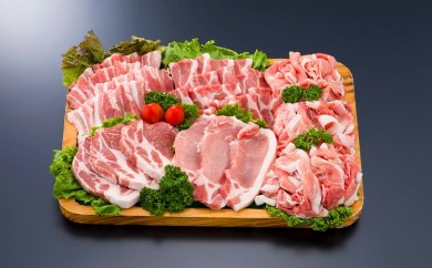 MJ-1204_都城産「きなこ豚」焼肉・とんかつセット
