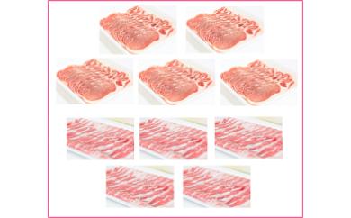 【B05006】大盛!鹿児島県産豚ロース&豚バラ10パックセット