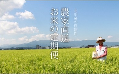 F-51 【限定200口】農家直送!お米の定期便(5kg×12回)