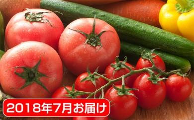[№5881-0101]府中市内農家の季節野菜・果物詰合せ 2018年7月お届け